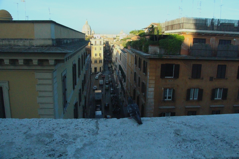 Rome Birds Eye view