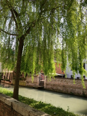 The glistening canals of Treviso relay the peaceful atmosphere that pervades this quaint country town